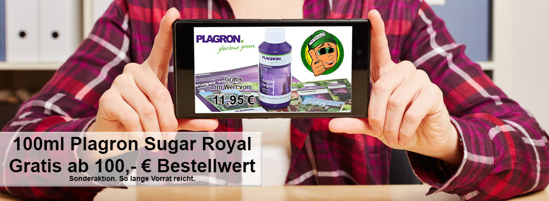 Plagron Sugar Royal AKTION