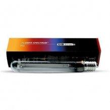 Leuchtmittel (NDL, MH & ESL)