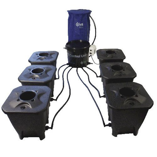 IWS Deep Water Culture System 6 Pot inkl. Flextank 100l