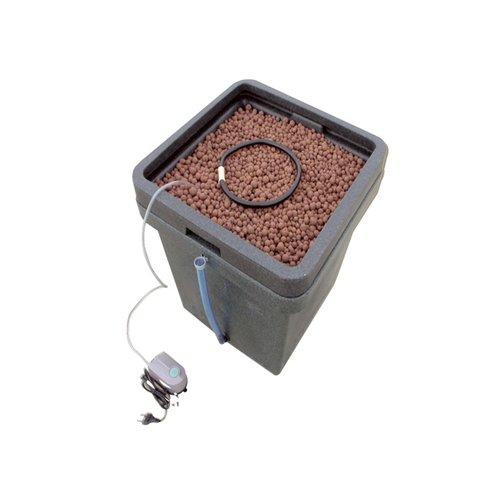 Hydrosysteme hydrokultur ab 99 euro frei haus for Hydropflanzen versand